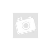 Implant Guide System műszertálca